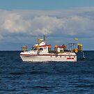 2775 Skalli HU-33 by Photos by Ragnarsson