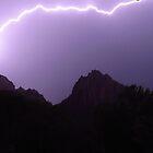 Purple Power by Lynn Stratton