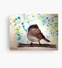 Bird brains Canvas Print