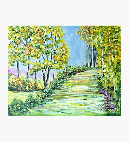 Path of Dreams Photographic Print