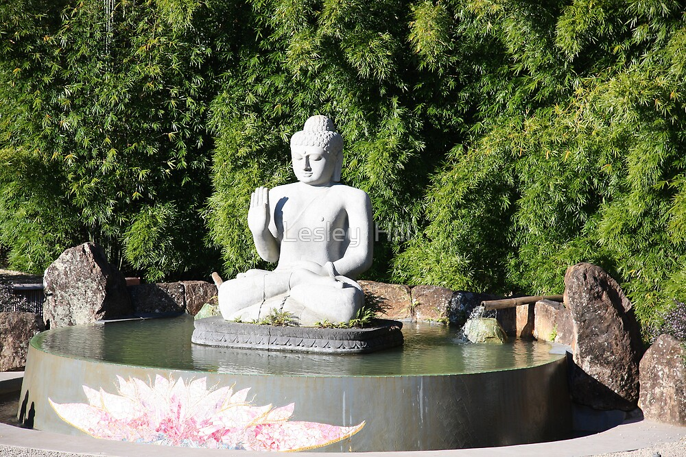 Buddha! by Lesley  Hill