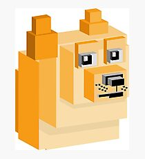Doge - Meme in Voxel Graphic Photographic Print