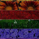 """Pride Flag """"Flowers"""" (Rainbow Flag) von JaneMYoung"""