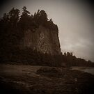 Tow Hill, Naikoon Provincial Park, Haida Gwaii, British Columbia, Canada by Edward A. Lentz