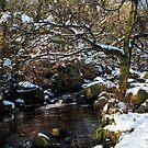 Burbage Brook in Winter by John Dunbar
