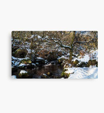 Burbage Brook in Winter Canvas Print
