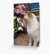Ginger kitten with flowers Greeting Card