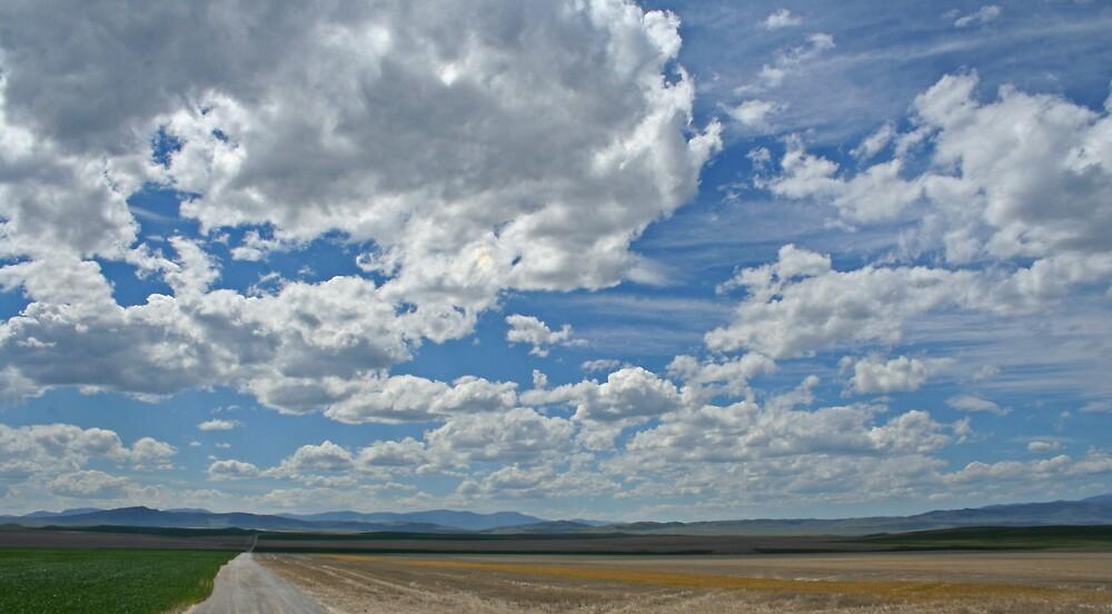 Big Sky Montana by Patricia Shriver