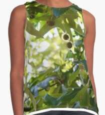 Sycamore Contrast Tank
