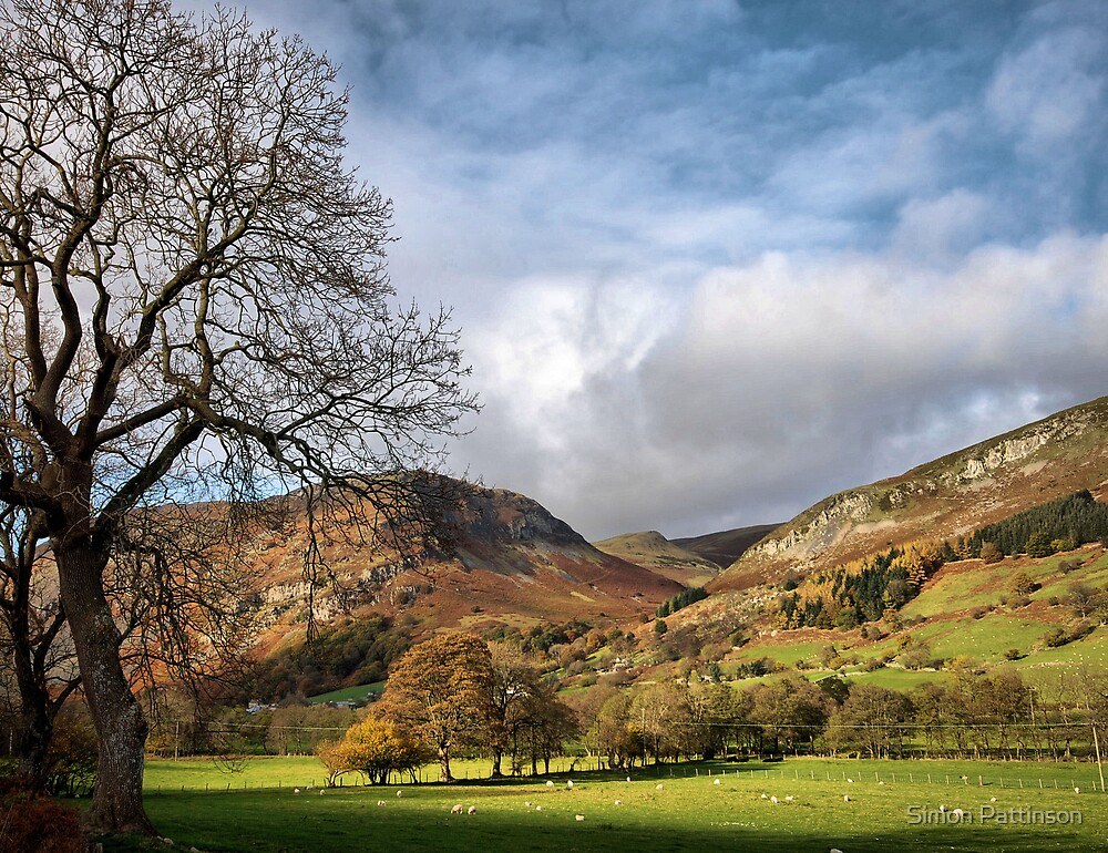 Welsh Countryside by Simon Pattinson