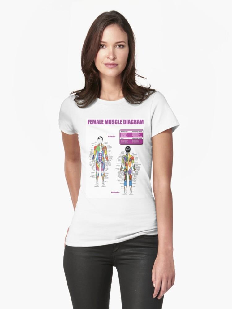 Camisetas entalladas para mujer «Diagrama de Músculos Femeninos ...
