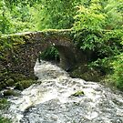 The Old Bridge by Clayton  Turner