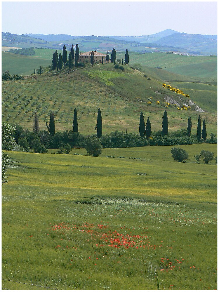 Quintessential Tuscany by avocet