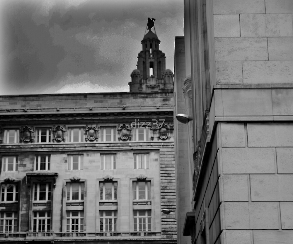liverpool  by dizz37