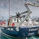 Yachting in Seward!  by John  Kapusta