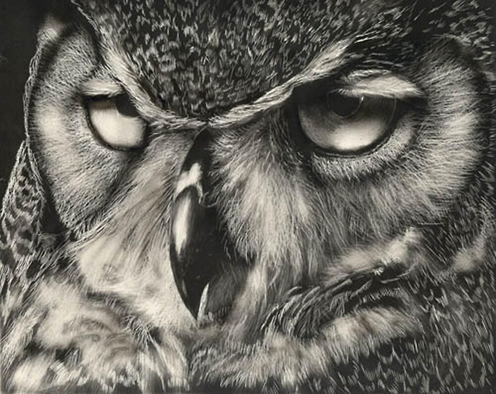 Owl by Bill Dykes