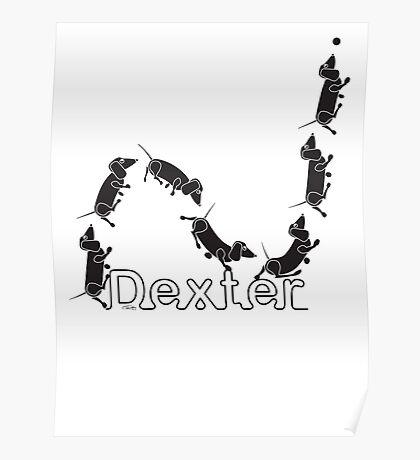 Dexter The Ball Boy Poster