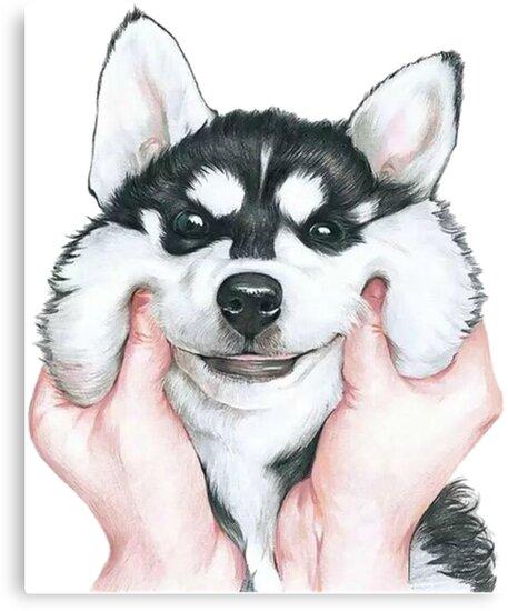 Husky by Shiiraoka