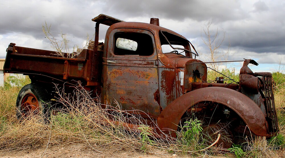 Stuck in Neutral by Debbie Irwin