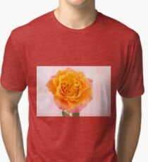 You Are A Beauty! Tri-blend T-Shirt