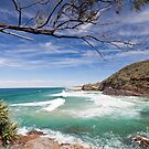 Noosa Heads National Park by Brad Baker