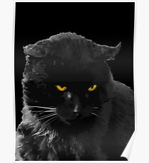 Baghera is the black cats' king Poster