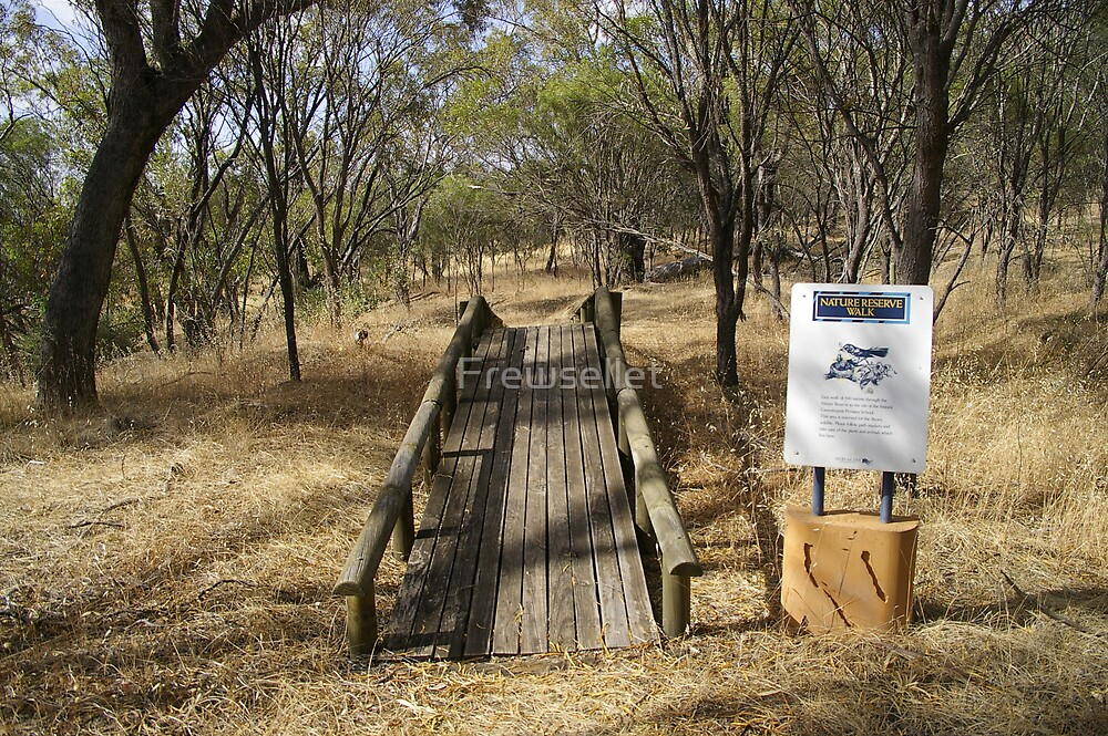 A bridge to no where  by Frewsellet
