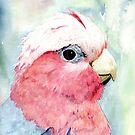 Australian Galah Cockatoo Watercolour Painting  by Heatherian