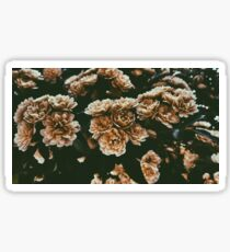 Dull Bloom Sticker