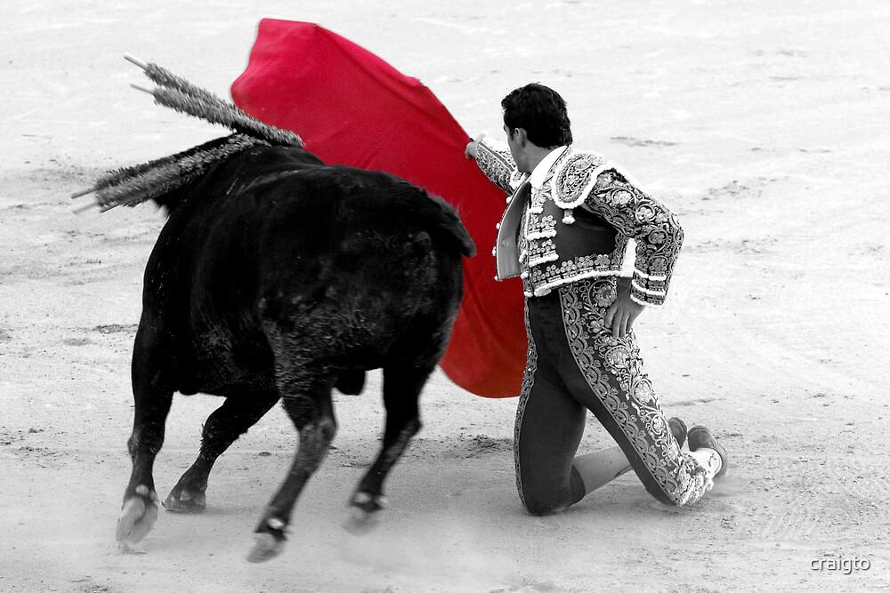 Matador and Bull. 1 by craigto