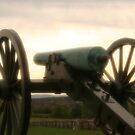 Lone cannon by DJ Florek