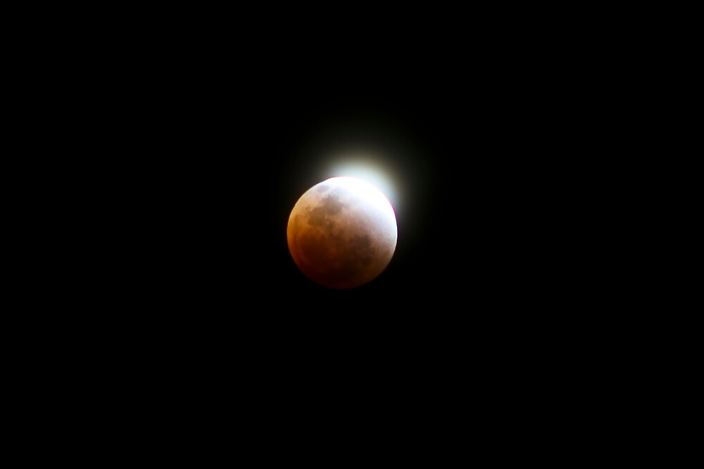 Lunar Eclipse by andrewt