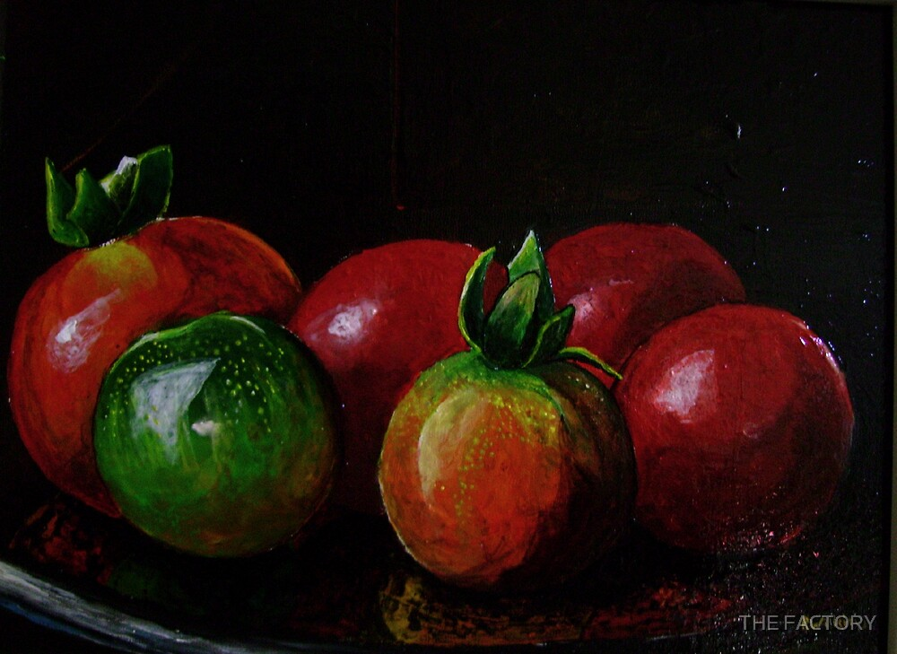 Tomatoes on a Table by THE FACTORY