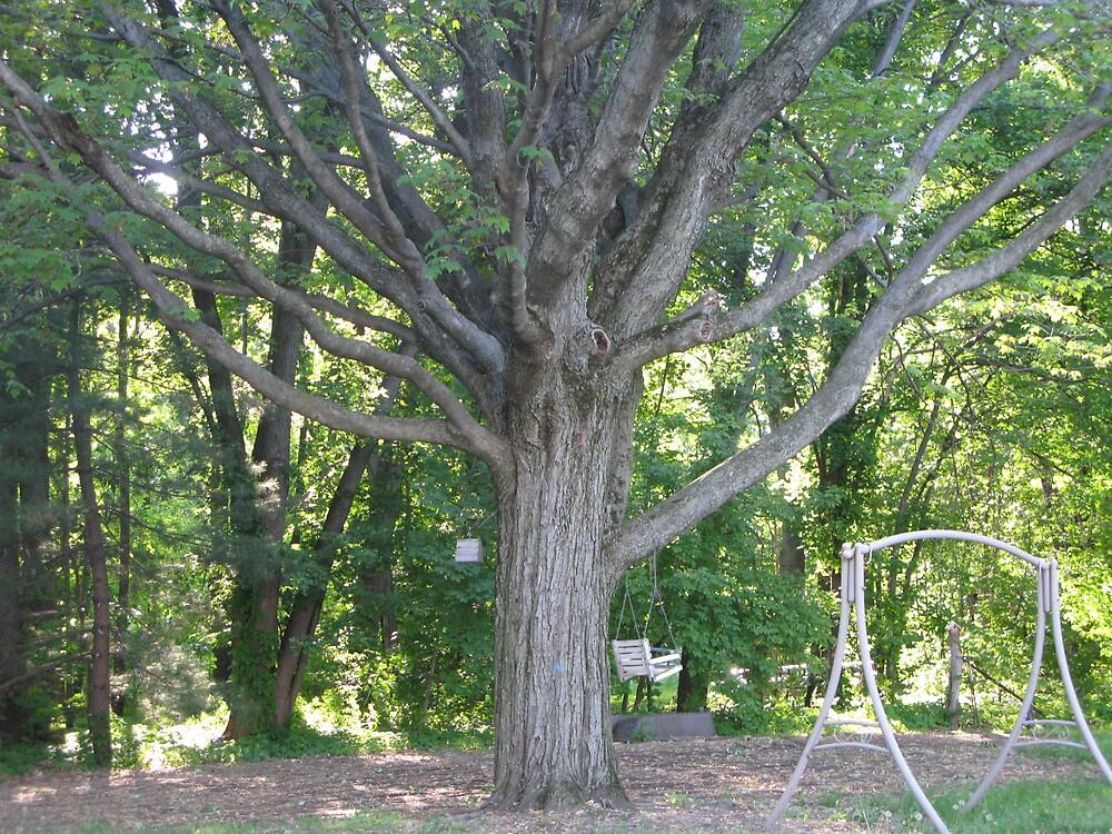 OZ TREE by Spiritinme