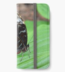Beautiful brown butterfly on green leaves iPhone Wallet