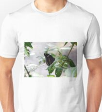 Black butterfly on green leaves  T-Shirt