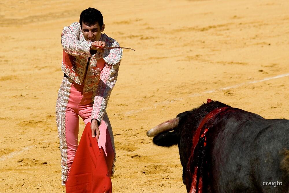 The Matador by craigto