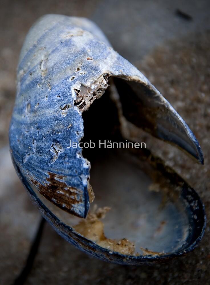 Abandoned Beach House by Jacob Hänninen