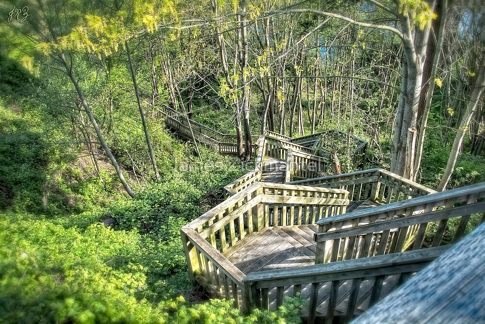 Hidden Cliff Stairs (HDR) by James Zickmantel