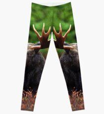 Relax Moose Leggings