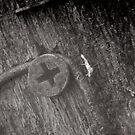 Rusty screw I by distortion
