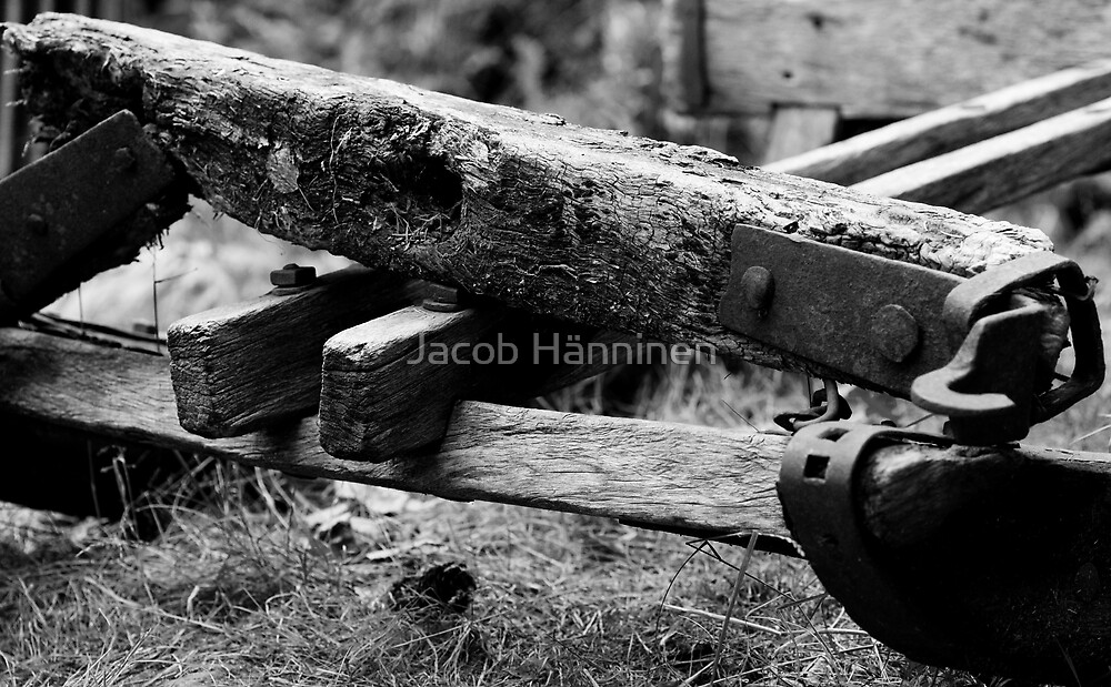 Sled by Jacob Hänninen