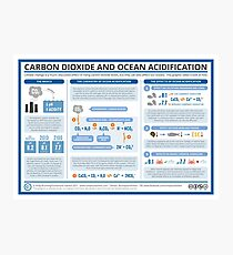 The Chemistry of Ocean Acidification Photographic Print