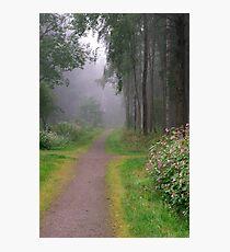 Misty way Photographic Print