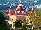 Monserrate Palace. Sintra by terezadelpilar ~ art & architecture