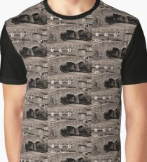 Packhorse Bridge at Allerford, Somerset Graphic T-Shirt