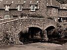Packhorse Bridge at Allerford, Somerset by trish725
