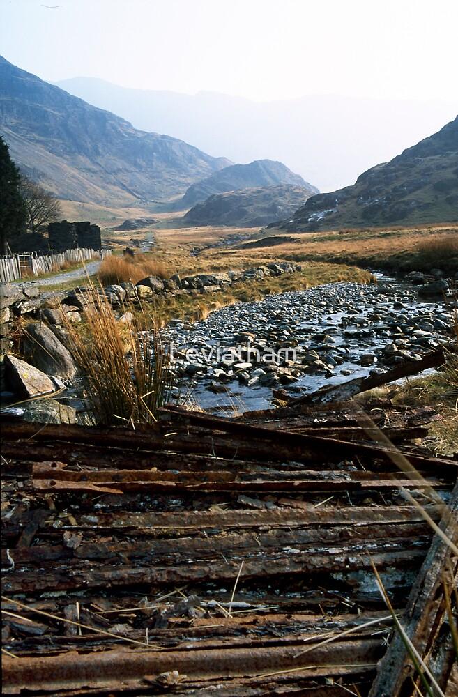 Welsh Landscape by Leviatham