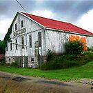 Old Barn III by jpryce