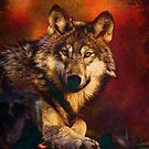 Hunting - Wolf on the prowl by WickedLola